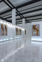 ساختمان های فرهنگی  - پروژه های سطح و صنعت